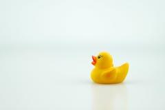 Gele rubberstuk speelgoed eend Royalty-vrije Stock Afbeelding