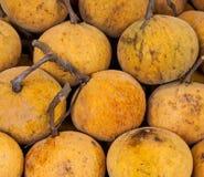 Gele Sandoricum koetjape of Santol-fruit Stock Afbeelding
