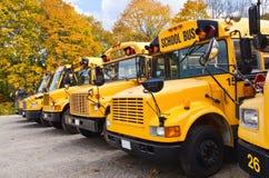 Gele schoolbussen Royalty-vrije Stock Foto's