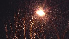 Gele straatlantaarn en rijkelijk dalende sneeuw tegen de donkere hemel stock footage
