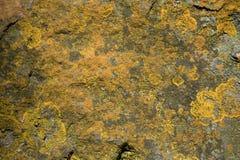 Gele tekens van vochtigheid in steen royalty-vrije stock foto