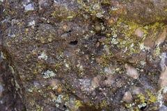 Gele tekens van vochtigheid in steen stock afbeelding