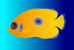 Gele tropische vissen Stock Afbeelding