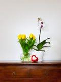 Gele tulpen en orchideeën Stock Afbeeldingen