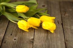 Gele tulpen op een houten oppervlakte Royalty-vrije Stock Foto's