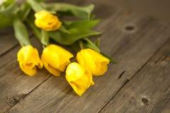 Gele tulpen op een houten oppervlakte Stock Foto