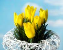 Gele tulpen op hemelachtergrond met rieten mand stock fotografie