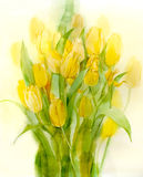 Gele tulpen. Stilleven. Waterverf op papier stock foto's