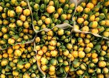 Gele tulpenboeketten Royalty-vrije Stock Afbeelding