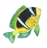 Gele vissen met een zwarte vlek, witte strepen en groene vinnen -0 stock illustratie