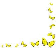 Gele vlinders Stock Illustratie