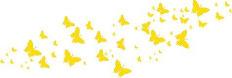Gele vlinders voor groetkaarten Royalty-vrije Stock Fotografie