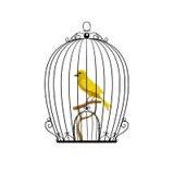 Gele vogel in een zwarte kooi Stock Foto