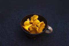 Gele wilde boscantharellen in de klei pipkin schotel met wit handvat op zwarte achtergrond Stock Fotografie