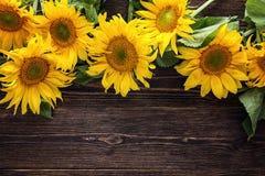 Gele zonnebloemen op een donkere houten achtergrond De ruimte van het exemplaar Royalty-vrije Stock Fotografie