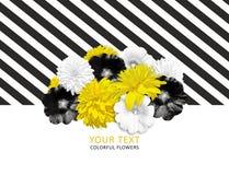 Gele, zwarte, witte bloemen op gestreepte achtergrond Heldere bloembanner Royalty-vrije Stock Afbeelding