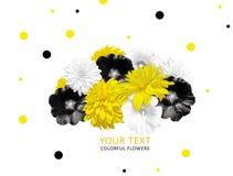 Gele, zwarte, witte die bloemen op witte achtergrond worden geïsoleerd Heldere bloembanner Rudbeckia, malvebloem Royalty-vrije Stock Foto's