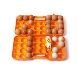 2017 gelegde kippeneieren in container naast aan kip Royalty-vrije Stock Afbeeldingen