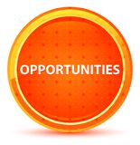 Gelegenheits-natürlicher orange runder Knopf vektor abbildung