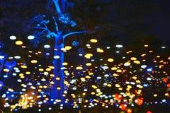Geleid die licht in park wordt gebruikt stock fotografie