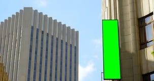 Geleid hamsteren op de buitenkant van het gebouw in stad 4k stock videobeelden