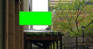 Geleid hamsteren op de buitenkant van het gebouw in stad 4k stock video