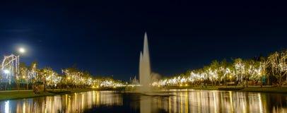 Geleid licht op boom in vakantie Stock Foto