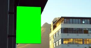 Geleide hamsteren op de buitenkant van de bouw 4k stock video
