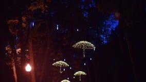 Geleide paraplu's op de bomen van de steeg in het centrale park stock footage