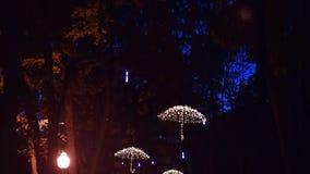 Geleide paraplu's op de bomen van de steeg in het centrale park stock videobeelden