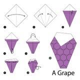 Geleidelijke instructies hoe te om tot origami een Druif te maken Royalty-vrije Stock Foto