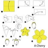 Geleidelijke instructies hoe te om tot origami een Kers te maken Stock Afbeeldingen