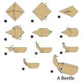Geleidelijke instructies hoe te om tot origami een Kever te maken Stock Afbeeldingen
