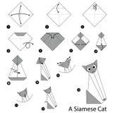 Geleidelijke instructies hoe te om tot origami een Siamese Kat te maken Royalty-vrije Stock Afbeeldingen