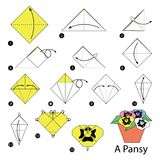 Geleidelijke instructies hoe te om tot origami een Viooltje te maken Royalty-vrije Stock Afbeeldingen