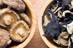 Geleioor en shiitake paddestoelen Royalty-vrije Stock Foto