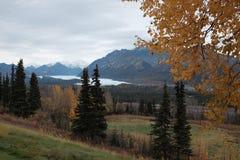 Geleira Alaska de Matanuska no outono Fotografia de Stock