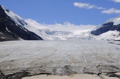 Geleira Colômbia Icefields de Athabasca Fotografia de Stock Royalty Free