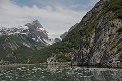 Geleira de Alaska da baía da descoberta foto de stock