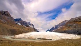 Geleira de Athabasca no parque nacional do jaspe Imagem de Stock