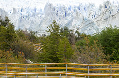 Geleira de Perito Moreno Patagonia, Argentina Fotografia de Stock