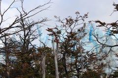A geleira Perito Moreno Foto de Stock