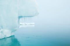 Geleiras e iceberg Fotos de Stock Royalty Free