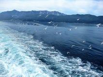 geleitschutz Abfahrt von der Insel Thassos, Griechenland Lizenzfreies Stockbild