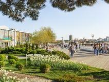 Gelendzhik, Krasnodar Krai Rosja, Kwiecień, - 29 2017: Piękni kwiatów łóżka na Środkowym deptaku Gelendzhik Obrazy Royalty Free