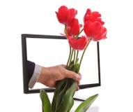 Geleverde de Bloemen van Internet Royalty-vrije Stock Afbeeldingen
