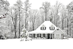 Gelido e freddo Fotografia Stock