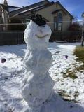 Gelido il pupazzo di neve Fotografie Stock Libere da Diritti