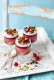 Gelieren Sie Nachtischschichten wie panna Cotta: Kaffee, Schokolade, Himbeeren, Kokosnuss mmilkilk lizenzfreies stockbild