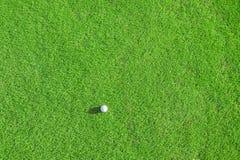 Gelieve te controleren mijn portefeuille meer sportieve illustraties Groene gebied en bal in gras stock afbeelding